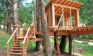 Правила самостоятельного строительства домика на дереве