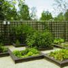 Как самостоятельно сделать огород красивее?