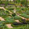 Красивый огород своими руками фото и примеры