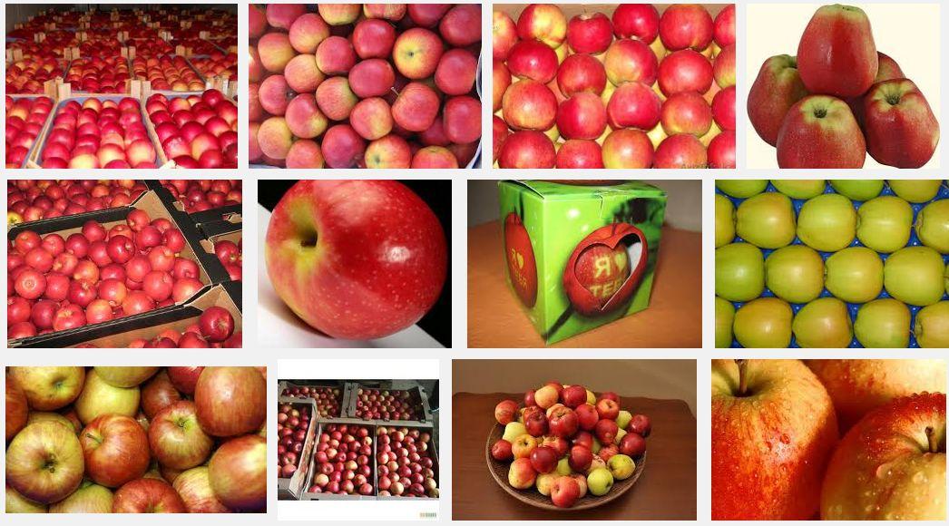 Различные способы хранения яблок