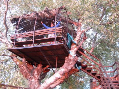 Легкий домик на дереве