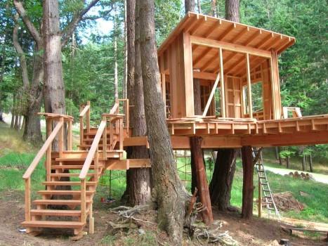 Как построить надежный домик на дереве своими руками?