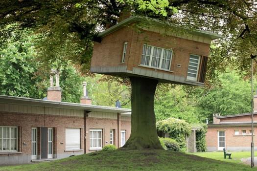 Подходящее для домика дерево