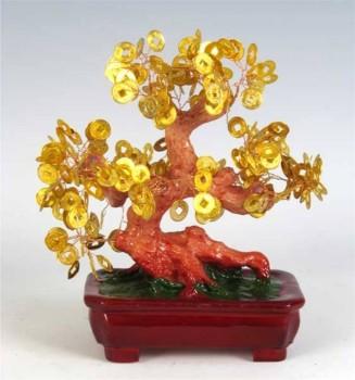 китайское денежное дерево