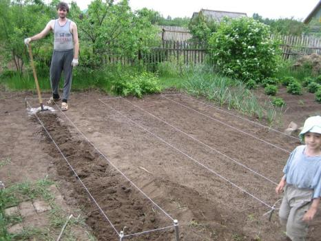 Выравниваем почву