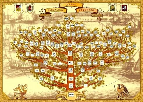 Схема изображения генеалогического дерева