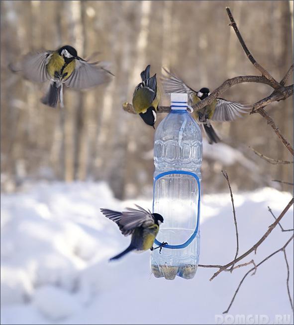 Фото кормушек для птиц своими руками из