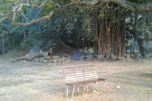 Скамейка у пруда и в тени