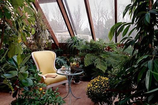 Зимний сад на мансарде