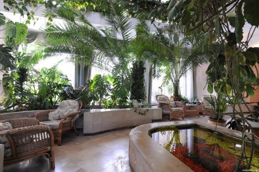Тропический зимний сад