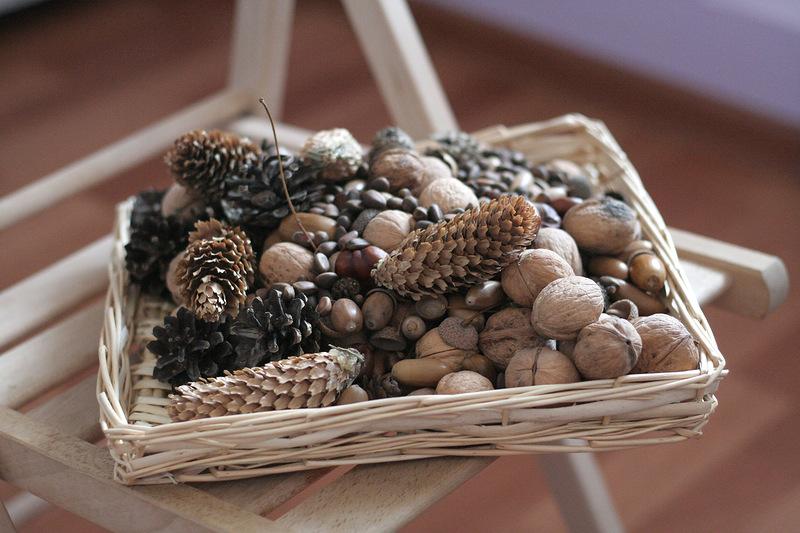Поделки из шишек желудей орехов